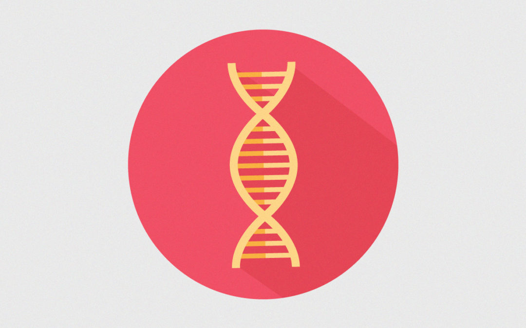 ¿Se hereda el estrés? Transgeneracional y epigenética conductual