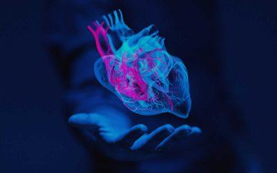 Tu corazón posee su propia inteligencia, y esto es lo que puedes hacer para desarrollarla