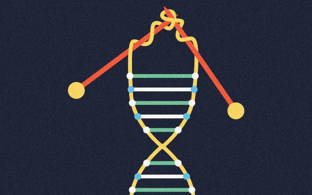 El Efecto Telómero: un enfoque revolucionario para vivir más sanos y retrasar el envejecimiento, según la Premio Nobel Elizabeth Blackburn